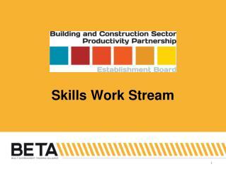 Skills Work Stream