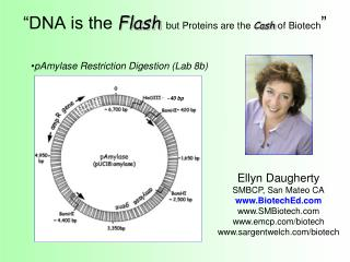 DNA is the Flash but Proteins are the Cash of Biotech