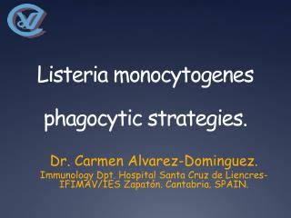 Listeria monocytogenes phagocytic strategies.