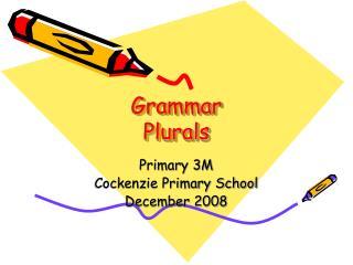 Grammar Plurals