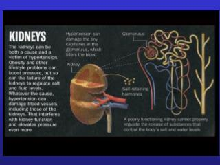 Microalbuminuria: Heeding the Alarm to Reduce Risk of ...