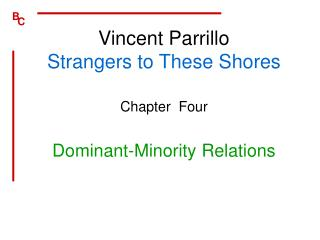 Vincent Parrillo Strangers to These Shores