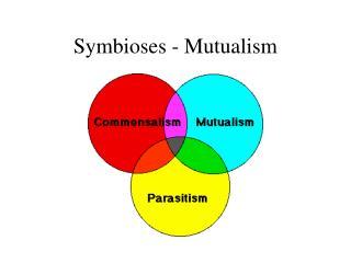 Symbioses - Mutualism