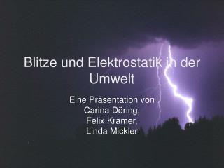 Blitze und Elektrostatik in der Umwelt