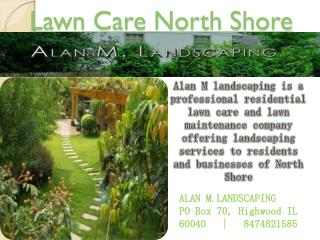 Lawn Care service in North Shore
