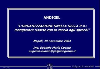 ANDIGEL   L ORGANIZZAZIONE SNELLA NELLA P.A.: Recuperare risorse con la caccia agli sprechi    Napoli, 19 novembre 2004