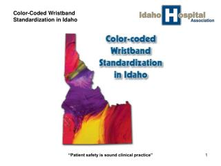 Color-Coded Wristband Standardization in Idaho