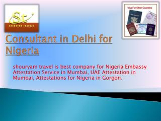 visa consultant in delhi for nigeria