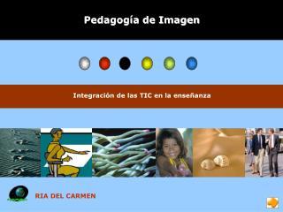 Pedagog a de Imagen