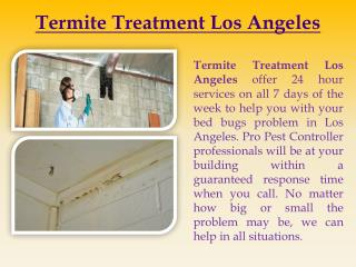 Termite Treatment Los Angeles