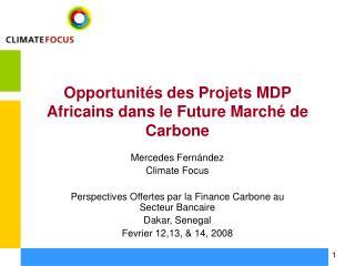 Opportunit s des Projets MDP Africains dans le Future March  de Carbone