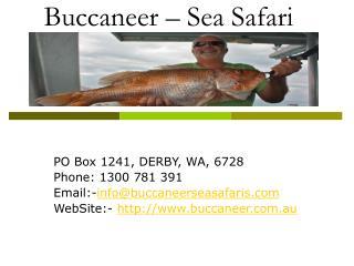 Buccaneer - Sea Safari