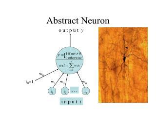 Abstract Neuron