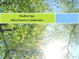 afvallen tips:   whey protein is aanbevolen