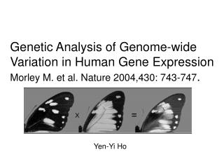 Genetic Analysis of Genome-wide Variation in Human Gene Expression Morley M. et al. Nature 2004,430: 743-747.