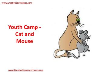 Youth Camp - Cat and Mouse