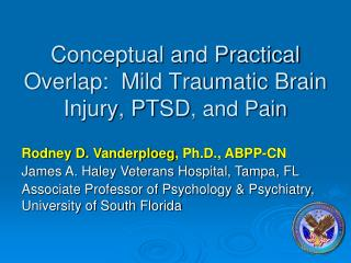 Conceptual and Practical Overlap:  Mild Traumatic Brain Injury, PTSD, and Pain