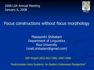 Focus constructions without focus morphology