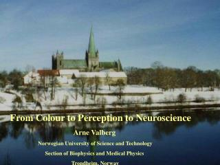 From Colour to Perception to Neuroscience     Arne Valberg   Norwegian University of Science and Technology  Section of