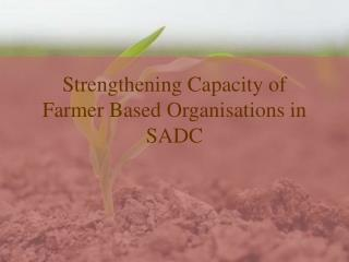 Strengthening Capacity of Farmer Based Organisations in SADC