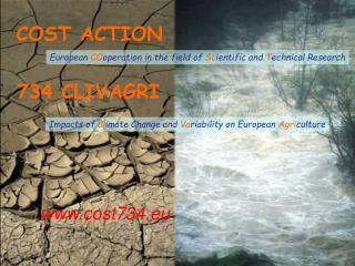 COST ACTION