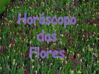 Hor scopo das Flores