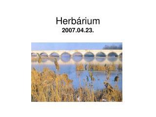 Herb rium 2007.04.23.