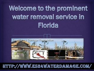 The prominent water removal service in Florida