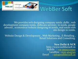 Web design company in nodia, , web  development company in n