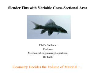 Slender Fins with Variable Cross-Sectional Area