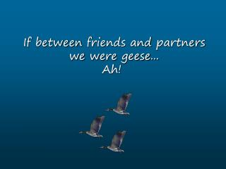 If between friends and partners we were geese... Ah