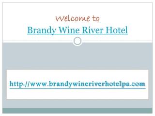 hotel near brandywine river museum