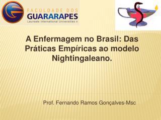 A Enfermagem no Brasil: Das Pr ticas Emp ricas ao modelo Nightingaleano.