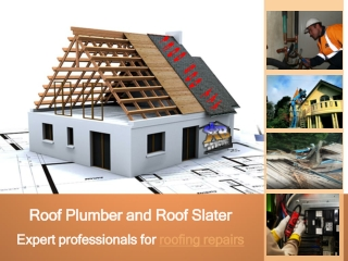 Roof Plumber and Roof Slater