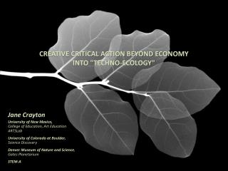 Creative Critical Action beyond Economy  into Techno-Ecology