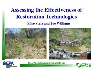 Ground Water and Ecosystems Restoration Division