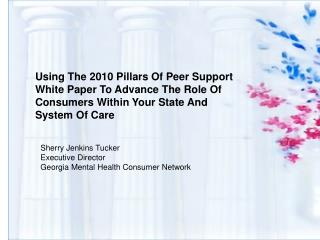 Using The 2010 Pillars Of Peer Support White Paper To Advance The Role Of Consumers Within Your State And System Of Care