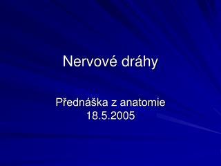 Nervov  dr hy