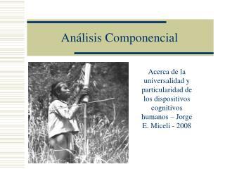 An lisis Componencial