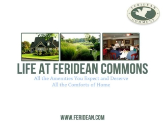 Life At Feridean Commons