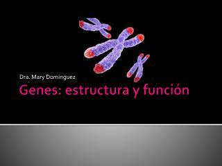 Genes: estructura y funci n