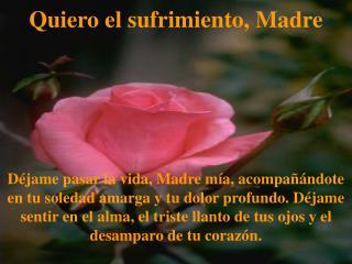 Quiero el sufrimiento, Madre    D jame pasar la vida, Madre m a, acompa  ndote en tu soledad amarga y tu dolor profundo.