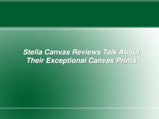 Stella Canvas Reviews