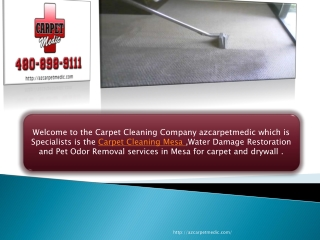 High Quality Carpet Cleaning in Mesa AZ