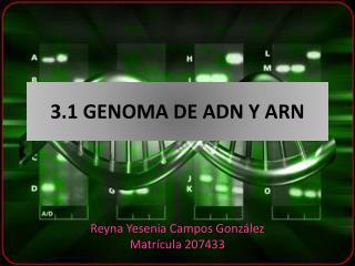 3.1 GENOMA DE ADN Y ARN