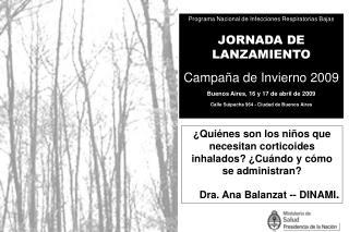 Programa Nacional de Infecciones Respiratorias Bajas JORNADA DE LANZAMIENTO Campa a de Invierno 2009 Buenos Aires, 16 y