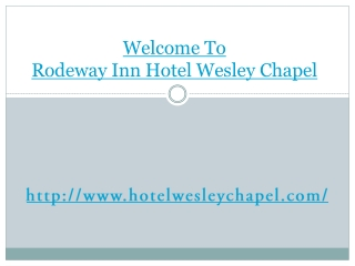 Wesley Chapel cheap hotel