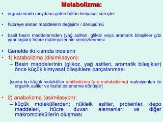 Metabolizma:
