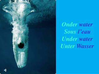 Onder water Sous l eau Under water Unter Wasser