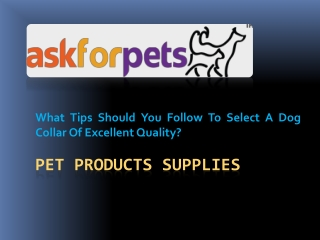 Pet Products Supplies